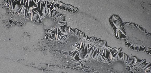 Foto, Frost